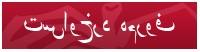 Farsi Complaint Form (PDF)