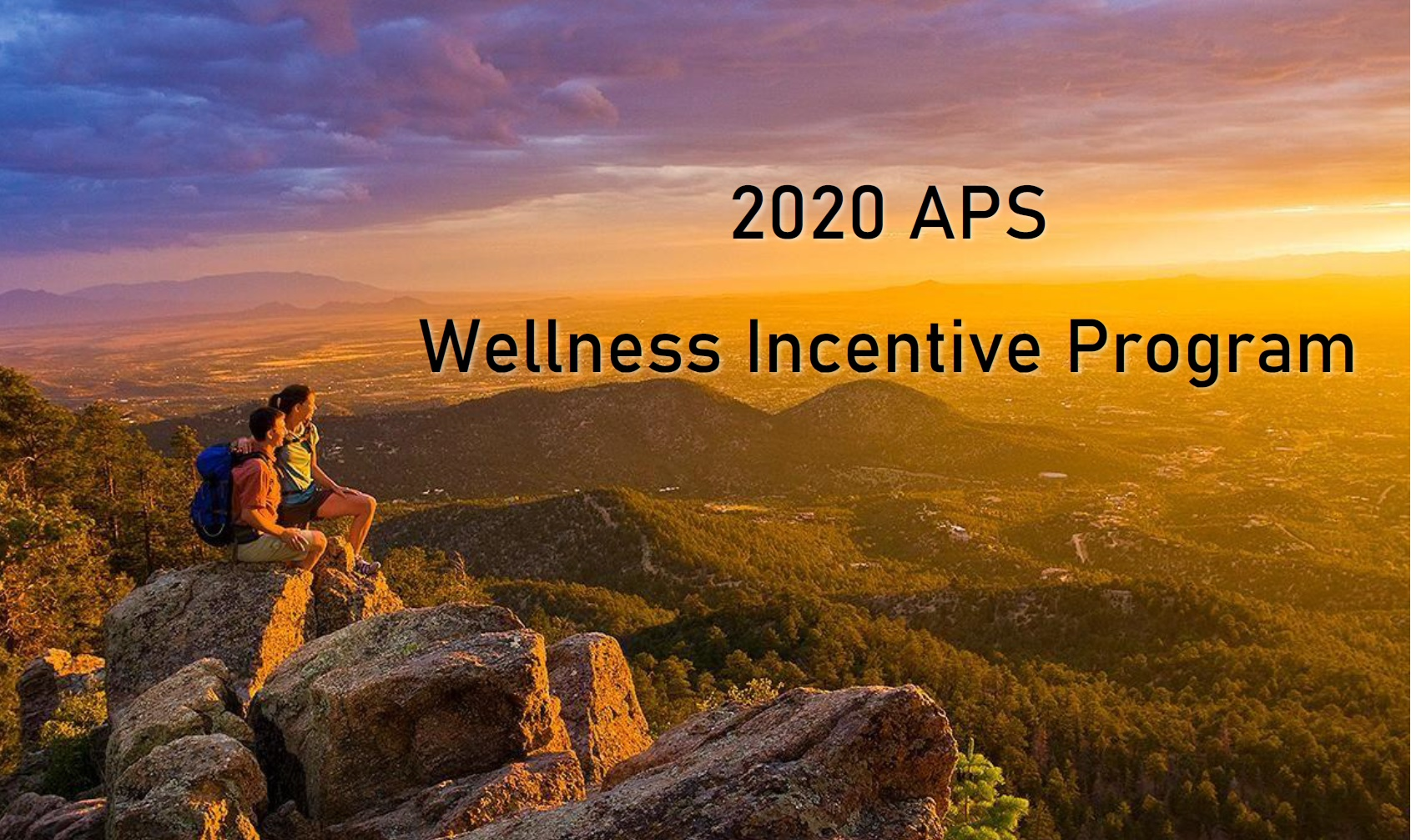 2020 APS Emplyee wellness incentive picture