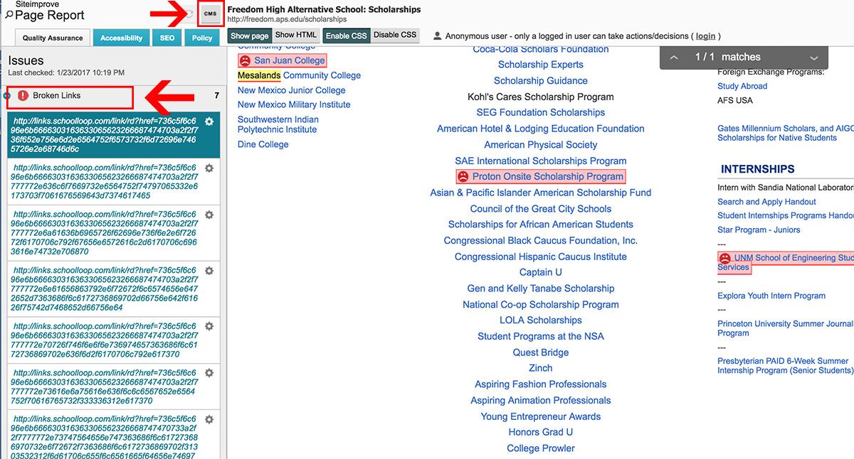 School SiteImprove Page Report