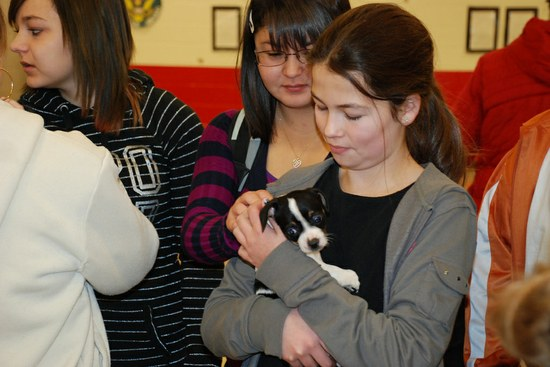 Roosevelt Middle School Dog Rescue Event