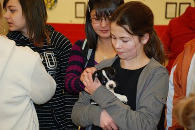 Roosevelt Middle School Dog Rescue Event